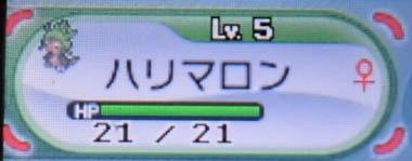 131027xy03.jpg